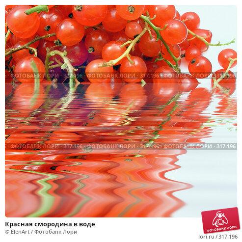 Красная смородина в воде, фото № 317196, снято 23 марта 2017 г. (c) ElenArt / Фотобанк Лори