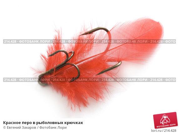 Красное перо в рыболовных крючках, фото № 214428, снято 2 марта 2008 г. (c) Евгений Захаров / Фотобанк Лори