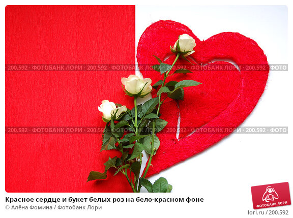 Красное сердце и букет белых роз на бело-красном фоне, фото № 200592, снято 5 февраля 2008 г. (c) Алёна Фомина / Фотобанк Лори