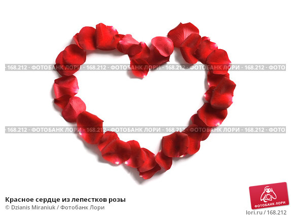 Красное сердце из лепестков розы, фото № 168212, снято 5 января 2008 г. (c) Dzianis Miraniuk / Фотобанк Лори