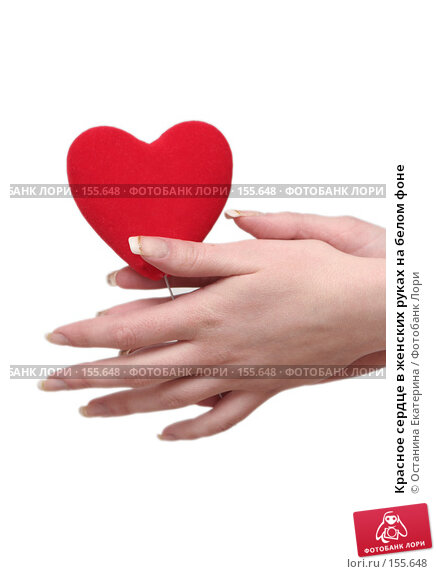 Красное сердце в женских руках на белом фоне, фото № 155648, снято 5 декабря 2007 г. (c) Останина Екатерина / Фотобанк Лори