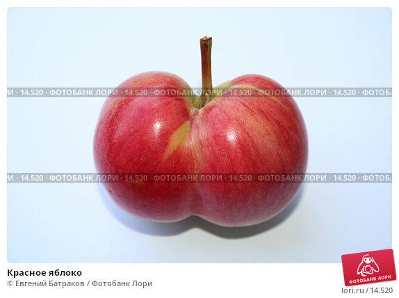 Красное яблоко, фото № 14520, снято 14 июля 2006 г. (c) Евгений Батраков / Фотобанк Лори