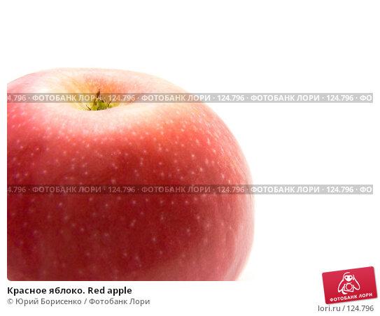 Красное яблоко. Red apple, фото № 124796, снято 15 сентября 2007 г. (c) Юрий Борисенко / Фотобанк Лори