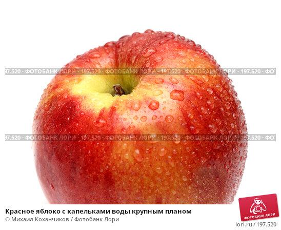 Красное яблоко с капельками воды крупным планом, фото № 197520, снято 6 февраля 2008 г. (c) Михаил Коханчиков / Фотобанк Лори