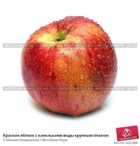 Красное яблоко с капельками воды крупным планом, фото № 223364, снято 6 февраля 2008 г. (c) Михаил Коханчиков / Фотобанк Лори