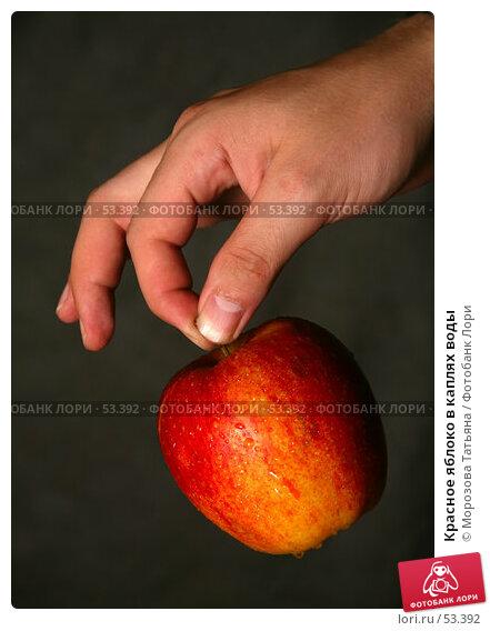 Красное яблоко в каплях воды, фото № 53392, снято 15 июня 2007 г. (c) Морозова Татьяна / Фотобанк Лори