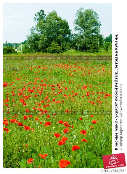 Красные маки - украсят любой пейзаж. Летом на Кубани., фото № 319768, снято 8 июня 2008 г. (c) Федор Королевский / Фотобанк Лори