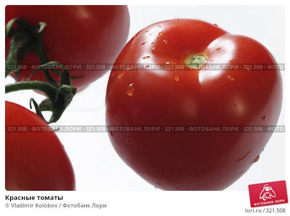 Красные томаты, фото № 321508, снято 19 мая 2008 г. (c) Vladimir Kolobov / Фотобанк Лори