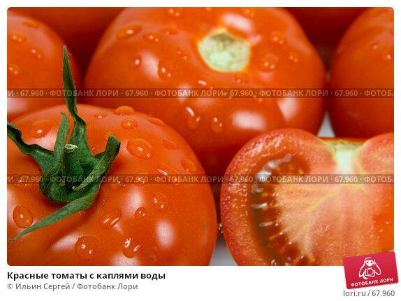 Красные томаты с каплями воды, фото № 67960, снято 6 мая 2007 г. (c) Ильин Сергей / Фотобанк Лори