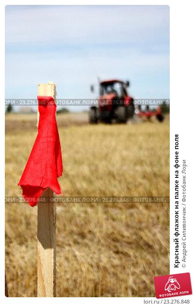 Красный флажок на палке на фоне поля. Стоковое фото, фотограф Андрей Силивончик / Фотобанк Лори