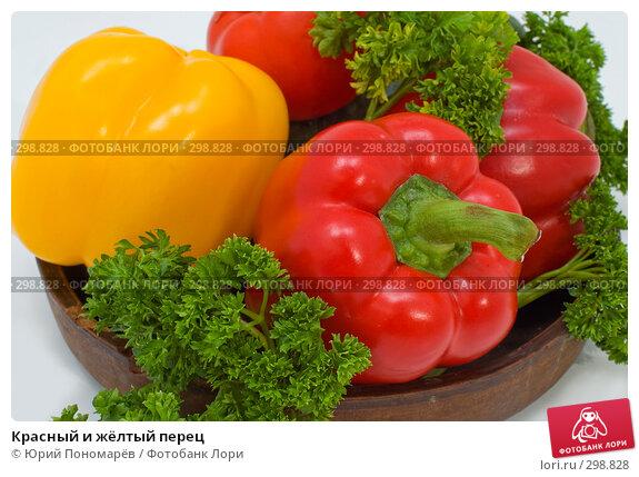 Купить «Красный и жёлтый перец», фото № 298828, снято 6 мая 2008 г. (c) Юрий Пономарёв / Фотобанк Лори
