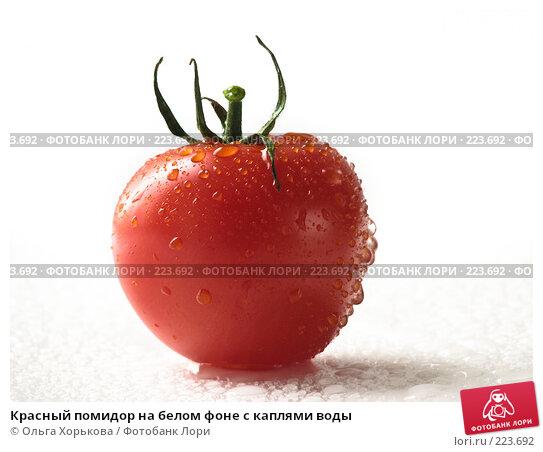 Красный помидор на белом фоне с каплями воды, фото № 223692, снято 22 августа 2017 г. (c) Ольга Хорькова / Фотобанк Лори
