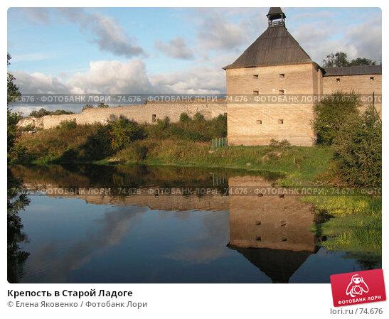 Купить «Крепость в Старой Ладоге», фото № 74676, снято 20 января 2005 г. (c) Елена Яковенко / Фотобанк Лори