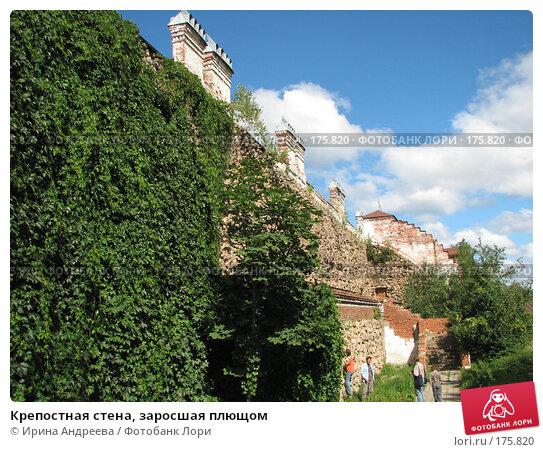 Крепостная стена, заросшая плющом, фото № 175820, снято 9 августа 2007 г. (c) Ирина Андреева / Фотобанк Лори