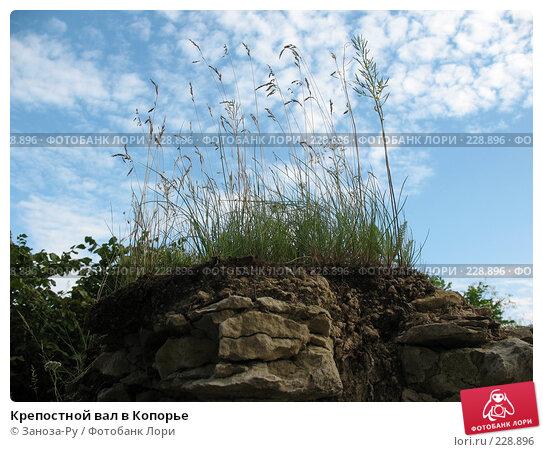 Крепостной вал в Копорье, фото № 228896, снято 12 августа 2007 г. (c) Заноза-Ру / Фотобанк Лори
