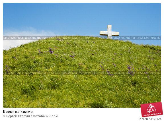 Купить «Крест на холме», фото № 312124, снято 4 июня 2008 г. (c) Сергей Старуш / Фотобанк Лори