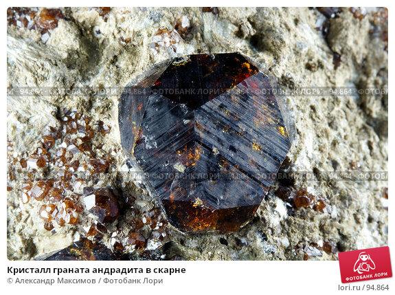 Кристалл граната андрадита в скарне, фото № 94864, снято 25 ноября 2006 г. (c) Александр Максимов / Фотобанк Лори