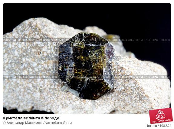 Кристалл вилуита в породе, фото № 108324, снято 25 ноября 2006 г. (c) Александр Максимов / Фотобанк Лори