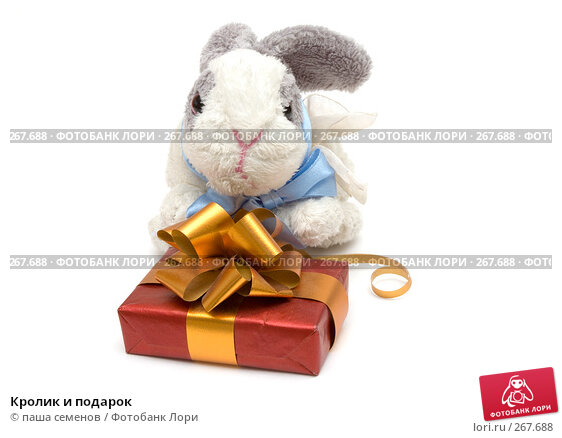 Кролик и подарок, фото № 267688, снято 26 марта 2008 г. (c) паша семенов / Фотобанк Лори
