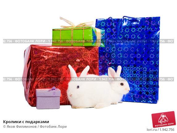 Кролики с подарками. Стоковое фото, фотограф Яков Филимонов / Фотобанк Лори