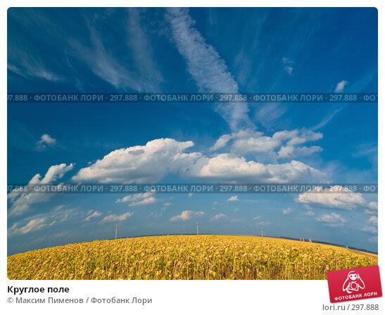 Круглое поле, фото № 297888, снято 26 августа 2007 г. (c) Максим Пименов / Фотобанк Лори