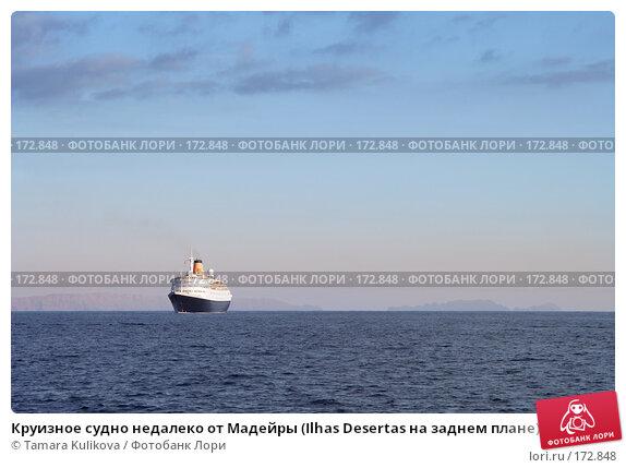 Круизное судно недалеко от Мадейры (Ilhas Desertas на заднем плане), фото № 172848, снято 31 декабря 2007 г. (c) Tamara Kulikova / Фотобанк Лори
