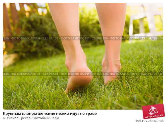 Женские ножки крупный план фото