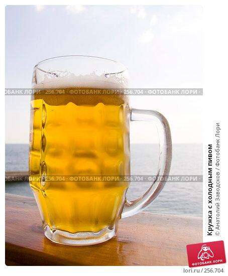 Кружка с холодным пивом, фото № 256704, снято 14 сентября 2006 г. (c) Анатолий Заводсков / Фотобанк Лори