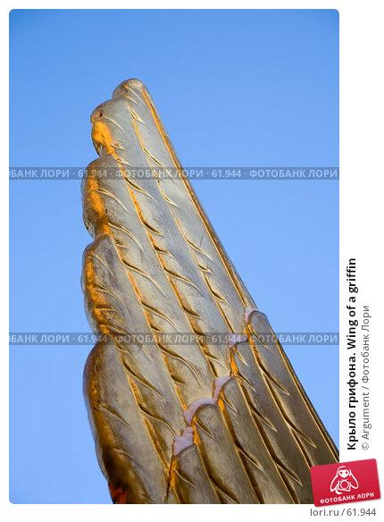 Крыло грифона. Wing of a griffin, фото № 61944, снято 29 января 2007 г. (c) Argument / Фотобанк Лори