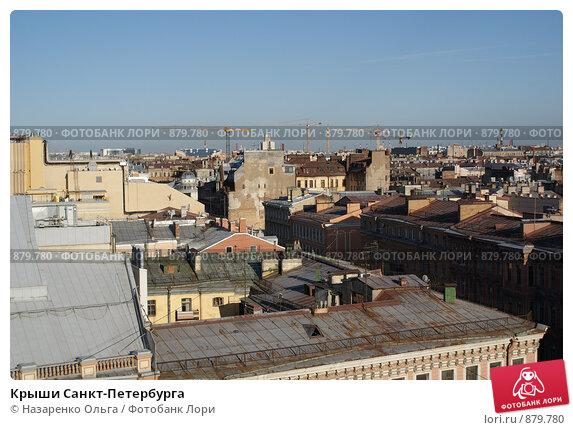 Купить «Крыши Санкт-Петербурга», фото № 879780, снято 8 мая 2009 г. (c) Назаренко Ольга / Фотобанк Лори