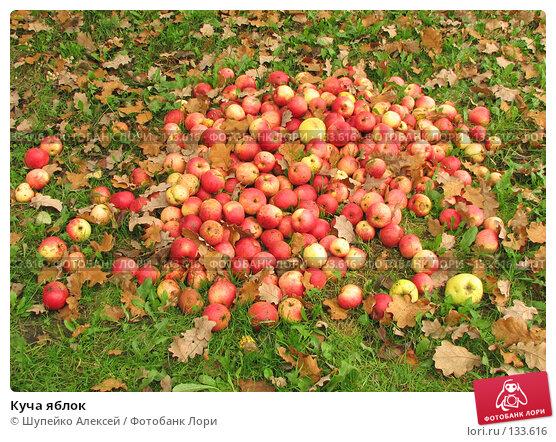 Купить «Куча яблок», фото № 133616, снято 14 октября 2006 г. (c) Шупейко Алексей / Фотобанк Лори