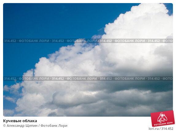 Купить «Кучевые облака», эксклюзивное фото № 314452, снято 4 июня 2008 г. (c) Александр Щепин / Фотобанк Лори