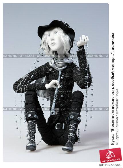 """Кукла """"В осеннем дожде есть особый минор..."""", целиком, фото № 55584, снято 18 марта 2007 г. (c) Сергей Лешков / Фотобанк Лори"""