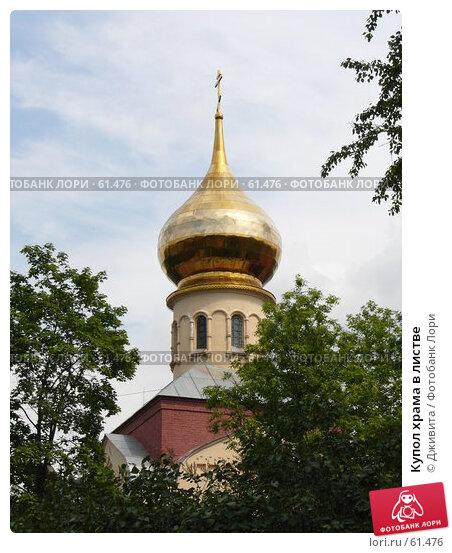 Купить «Купол храма в листве», фото № 61476, снято 3 июля 2007 г. (c) Дживита / Фотобанк Лори