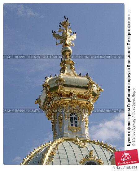 Купол с флюгером Гербового корпуса Большого Петергофского дворца, фото № 108676, снято 6 августа 2004 г. (c) Efanov Aleksey / Фотобанк Лори