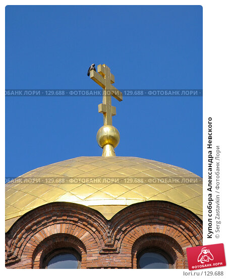 Купол собора Александра Невского, фото № 129688, снято 9 мая 2005 г. (c) Serg Zastavkin / Фотобанк Лори