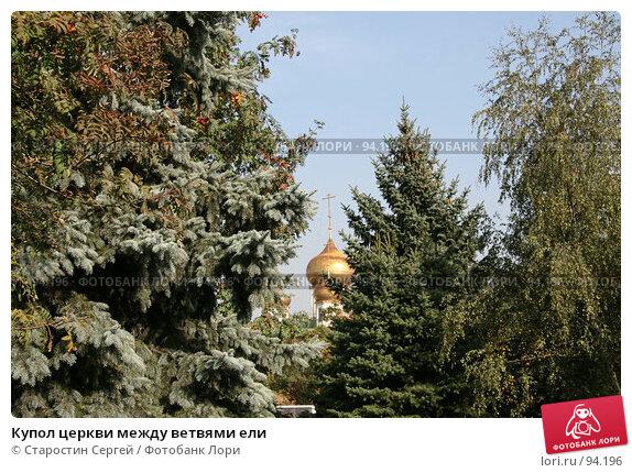 Купол церкви между ветвями ели, фото № 94196, снято 29 сентября 2007 г. (c) Старостин Сергей / Фотобанк Лори