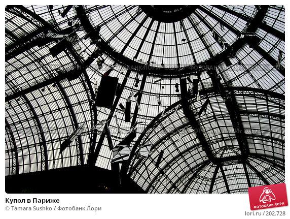 Купол в Париже, фото № 202728, снято 25 декабря 2007 г. (c) Tamara Sushko / Фотобанк Лори