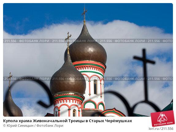 Купола храма Живоначальной Троицы в Старых Черёмушках, фото № 211556, снято 14 февраля 2008 г. (c) Юрий Синицын / Фотобанк Лори