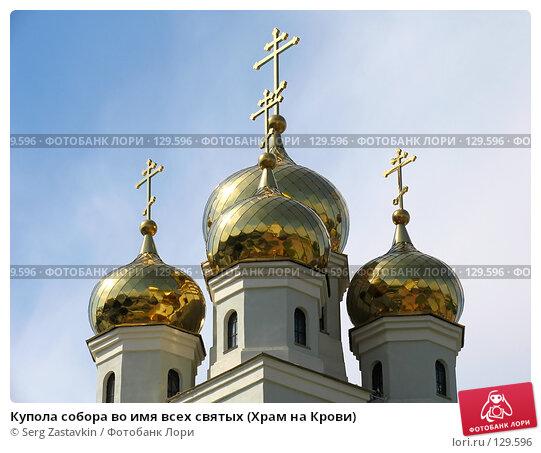 Купола собора во имя всех святых (Храм на Крови), фото № 129596, снято 3 июня 2005 г. (c) Serg Zastavkin / Фотобанк Лори