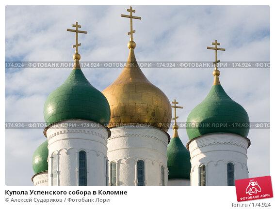 Купола Успенского собора в Коломне, фото № 174924, снято 13 января 2008 г. (c) Алексей Судариков / Фотобанк Лори