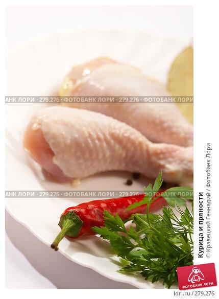 Купить «Курица и пряности», фото № 279276, снято 18 сентября 2005 г. (c) Кравецкий Геннадий / Фотобанк Лори