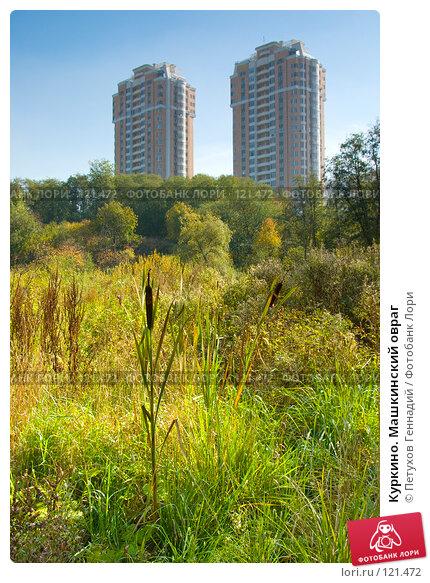 Куркино. Машкинский овраг, фото № 121472, снято 22 сентября 2007 г. (c) Петухов Геннадий / Фотобанк Лори