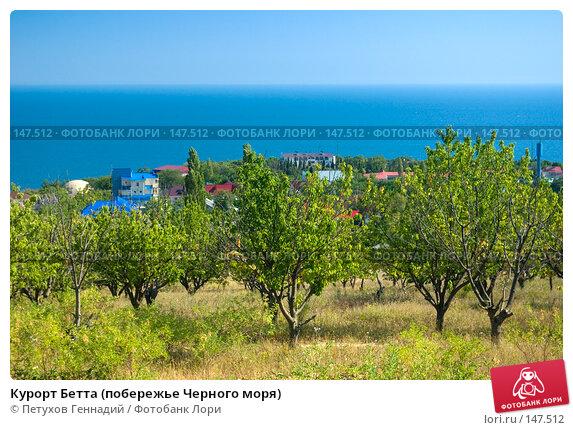 Курорт Бетта (побережье Черного моря), фото № 147512, снято 6 августа 2007 г. (c) Петухов Геннадий / Фотобанк Лори