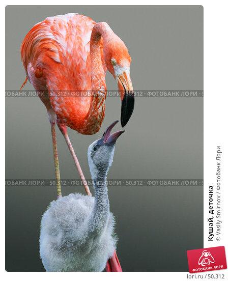 Купить «Кушай, деточка», фото № 50312, снято 7 июля 2002 г. (c) Vasily Smirnov / Фотобанк Лори
