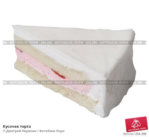 Купить «Кусочек торта», эксклюзивное фото № 254396, снято 8 июня 2006 г. (c) Дмитрий Неумоин / Фотобанк Лори