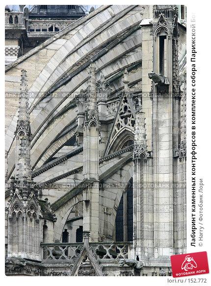 Лабиринт каменных контрфорсов в комплексе собора Парижской Богоматери во Франции, фото № 152772, снято 22 февраля 2006 г. (c) Harry / Фотобанк Лори