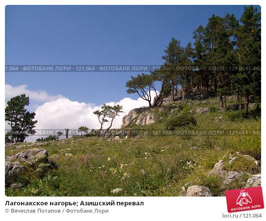 Купить «Лагонакское нагорье; Азишский перевал», фото № 121064, снято 5 августа 2007 г. (c) Вячеслав Потапов / Фотобанк Лори