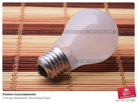 Лампа накаливания, фото № 227684, снято 20 марта 2008 г. (c) Игорь Веснинов / Фотобанк Лори