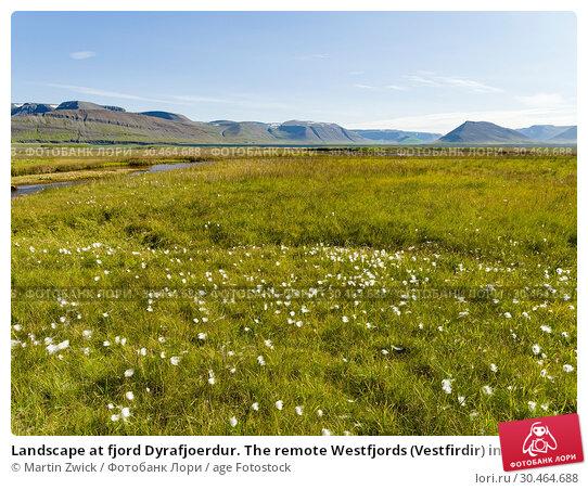 Landscape at fjord Dyrafjoerdur. The remote Westfjords (Vestfirdir) in north west Iceland. Europe, Scandinavia, Iceland. Стоковое фото, фотограф Martin Zwick / age Fotostock / Фотобанк Лори